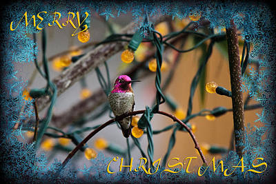 Merry Christmas Hummer Art Print