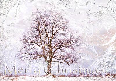 Merry Christmas Art Print by Jenny Rainbow