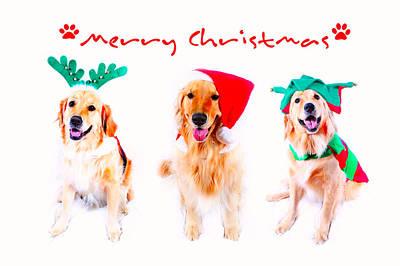 Digital Art - Merry Christmas by Kara  Stewart
