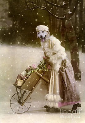 Labrador Digital Art - Merry Christmas by Martine Roch