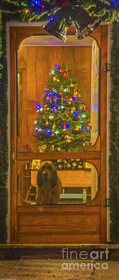 Screen Doors Photograph - Merry Christmas by Mitch Shindelbower