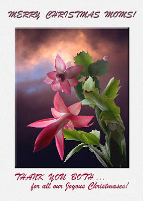 By Govan Photograph - Merry  Christmas  Moms Photo Greeting Card  by Andrew Govan Dantzler