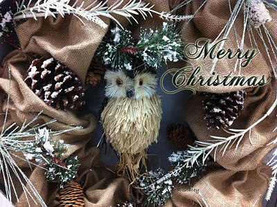 Photograph - Merry Christmas Owl by Robyn Stacey