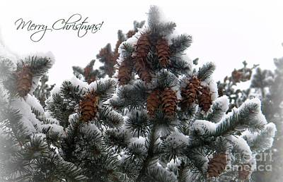 Merry Christmas Pinecones Art Print by Michelle Frizzell-Thompson