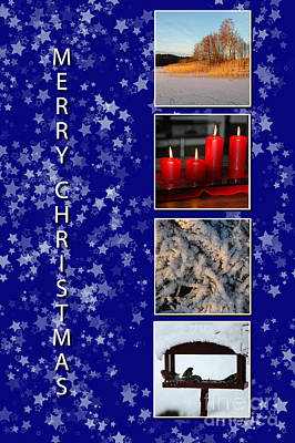 Photograph - Merry Christmas by Randi Grace Nilsberg
