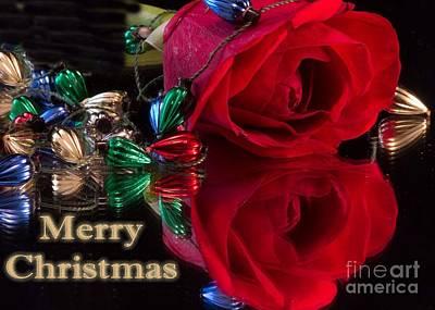 Photograph - Merry Christmas Rose/card by Sandra Clark