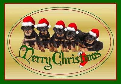Merry Christmas Rottweiler Puppies Greeting Card Art Print by Tracey Harrington-Simpson