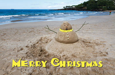 Photograph - Merry Christmas Sandman by Denise Bird