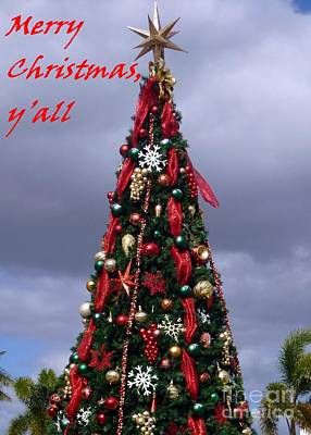 Photograph - Merry Christmas Y'all by Barbie Corbett-Newmin