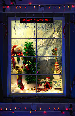 Photograph - Merry Christmas... Think Snow by Lynn Bauer