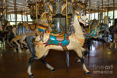 Photograph - Merry Go Around Dsc2945 by Wingsdomain Art and Photography