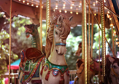 Photograph - Merry Go Round by Stephanie Hollingsworth