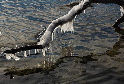 Photograph - Merry Icicle Reflections In Lake Ontario Toronto Canada by Georgia Mizuleva