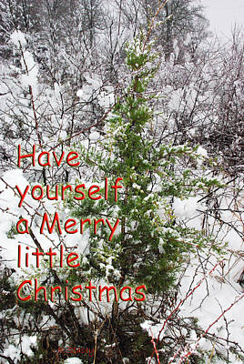 Photograph - Merry Little Christmas by Robyn Stacey