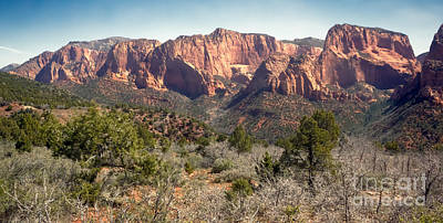 Photograph - Mesa In Kolob by Robert Bales