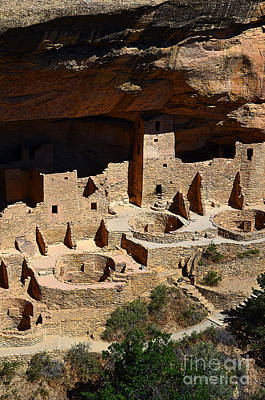 Digital Art - Mesa Verde National Park Cliff Palace Anasazi Ruin Poster Edges by Shawn O'Brien