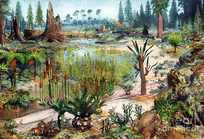 Photograph - Mesozoic Landscape by Science Source
