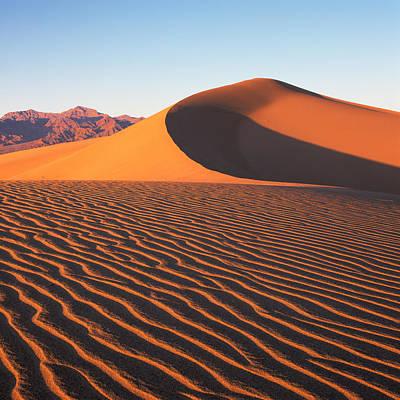 Photograph - Mesquite Dunes 1-sq by Tom Daniel