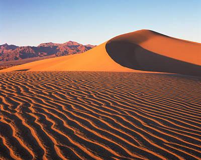 Photograph - Mesquite Dunes 1 by Tom Daniel