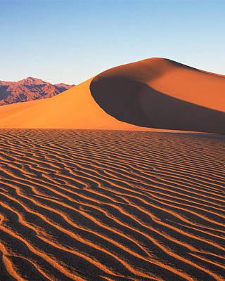 Photograph - Mesquite Dunes 1-v by Tom Daniel