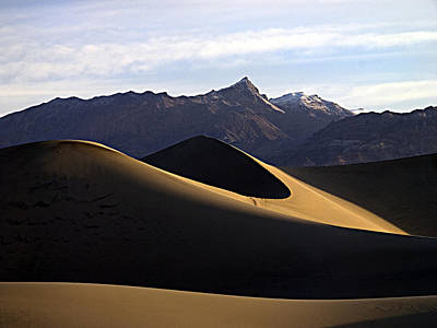 Art Print featuring the photograph Mesquite Dunes At Dawn by Joe Schofield