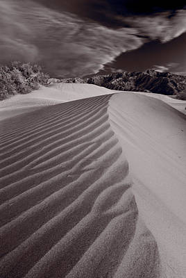 Mesquite Dunes Death Valley B W Original by Steve Gadomski