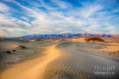 Mesquite Dunes Art Print