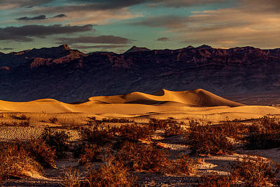 Photograph - Mesquite Flat Sunrise by Mark East
