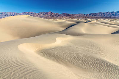 Photograph - Mesquite Sand Dunes Death Valley by Pierre Leclerc Photography