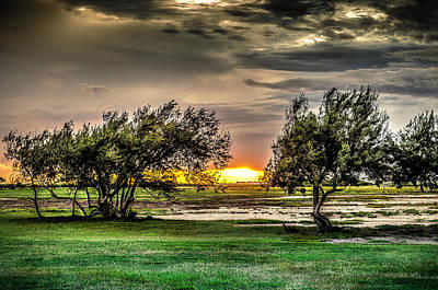Photograph - Mesquite Sunset Hdr by David Morefield