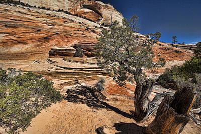 Mesquite Zion National Park Original