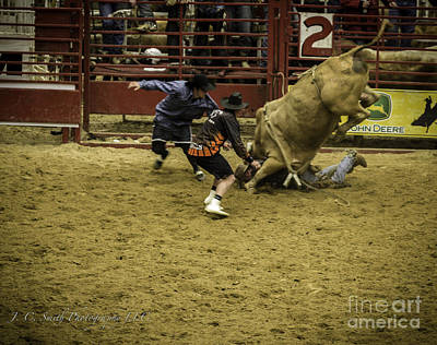 Photograph - Mess With The Bull Get The Horns by Jason Smith