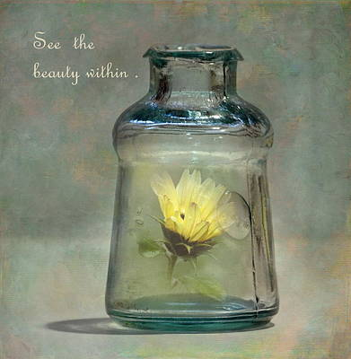Antique Bottles Photograph - Message In A Bottle by Angie Vogel