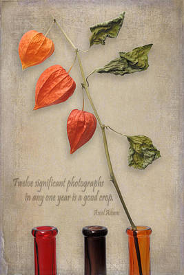 Photograph - Message Vii by Zoran Buletic