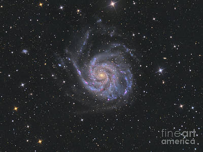 Photograph - Messier 101, The Pinwheel Galaxy by Reinhold Wittich