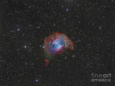Photograph - Messier 27, The Dumbbell Nebula by Reinhold Wittich