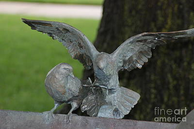 Photograph - Metal Birds by Mark McReynolds