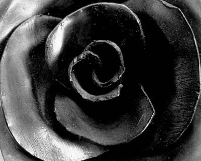 Photograph - Metal Petals by Guy Pettingell