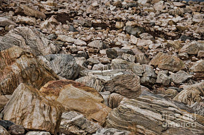 Photograph - Metamorphic Rock Patterns  by Donna Greene
