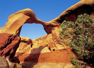 Arches National Monument Photograph - Metate Arch Stands Guard In Devil's by Jerry Ginsberg