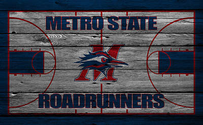 Roadrunner Wall Art - Photograph - Metropolitan State Roadrunners by Joe Hamilton