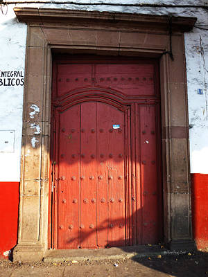 Photograph - Mexican Door 63 by Xueling Zou