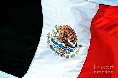Digital Art - Mexican Flag In A Stiff Breeze Fresco Digital Art by Shawn O'Brien