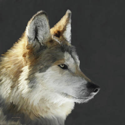 Wolf Eyes Painting - Mexican Grey Wolf Portrait Freehand by Ernie Echols