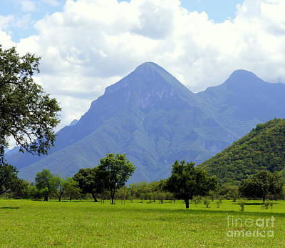Photograph - Mexican Mountains 3 by Rachel Munoz Striggow