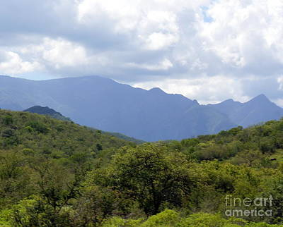 Photograph - Mexican Mountains 7 by Rachel Munoz Striggow