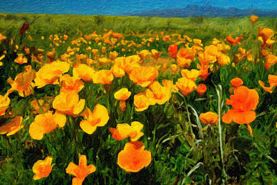 Digital Art - Mexican Poppies by Chuck Mountain