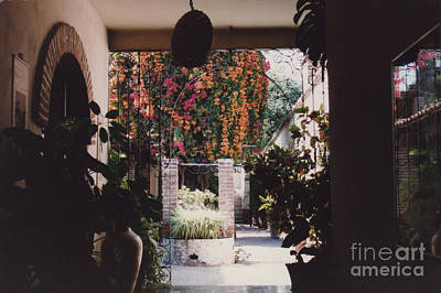 Photograph - Mexico Garden Patio By Tom Ray by First Star Art