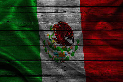 Flag Pole Photograph - Mexico by Joe Hamilton