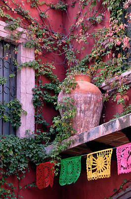 Olla Photograph - Mexico, San Miguel De Allende, Ivy by Jaynes Gallery